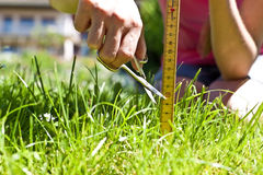 A mulher toma-o para segar exatamente o gramado Foto de Stock