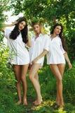 Mulher três 'sexy' bonita na camisa de um homem na natureza Imagem de Stock