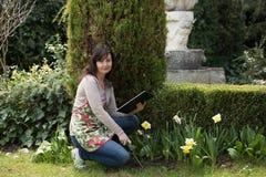 A mulher trabalha no jardim foto de stock