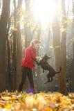 A mulher treina o cão novo Fotografia de Stock