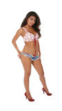 Mulher triguenha 'sexy' Fotografia de Stock Royalty Free