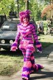 A mulher veste-se acima como um gato colorido da fantasia no fá da fantasia do duende Fotos de Stock Royalty Free