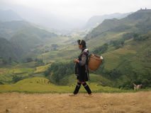 Mulher vietnamiana que anda em uma estrada estreita de Sapa Fotografia de Stock