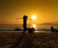 Mulher vietnamiana que vende frutos fotografia de stock royalty free