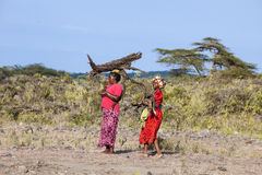 Mulheres africanas que levam a casa da lenha Imagens de Stock Royalty Free