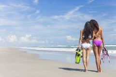 Mulheres bonitas do biquini da vista traseira na praia Foto de Stock Royalty Free