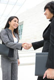 Mulheres bonitas no prédio de escritórios que agita as mãos Fotografia de Stock Royalty Free