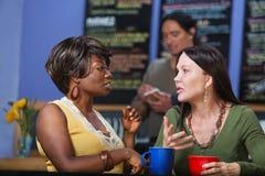Mulheres calmas na conversação fotografia de stock