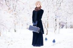 mulheres com mala de viagem Foto de Stock