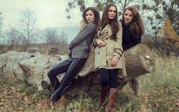 Mulheres da árvore imagens de stock