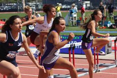 Mulheres da faculdade que correm a raça de obstáculo imagem de stock royalty free