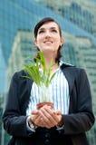 Mulheres de negócios com planta foto de stock