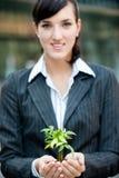 Mulheres de negócios com planta fotos de stock
