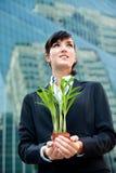 Mulheres de negócios com planta fotografia de stock