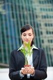 Mulheres de negócios com planta fotografia de stock royalty free