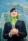Mulheres de negócios com planta imagens de stock
