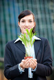 Mulheres de negócios com planta imagens de stock royalty free