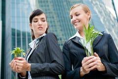 Mulheres de negócios com plantas Fotos de Stock Royalty Free