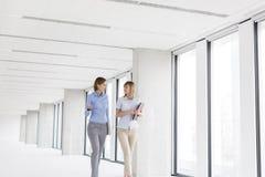 Mulheres de negócios que discutem ao andar no escritório novo vazio foto de stock