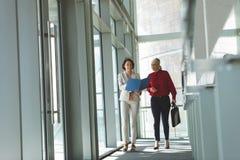 Mulheres de negócios que discutem sobre o documento ao andar no prédio de escritórios fotos de stock