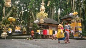Mulheres do Balinese que andam fora do templo em Sangeh video estoque