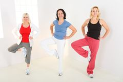 Mulheres durante o exercício Fotos de Stock
