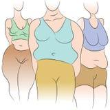 Mulheres excessos de peso ilustração royalty free