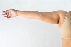 Mulheres gordas Fotografia de Stock Royalty Free