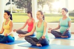 Mulheres gravidas felizes que exercitam a ioga no gym Fotografia de Stock Royalty Free