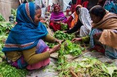 Mulheres indianas rurais que cortam vegetais Fotografia de Stock