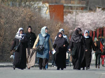 Mulheres muçulmanas Imagens de Stock Royalty Free