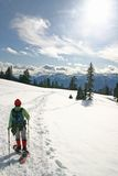 Mulheres na caminhada do inverno Imagem de Stock Royalty Free