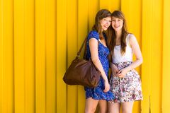 Mulheres novas bonitas fotografia de stock royalty free