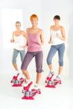 Mulheres que exercitam na máquina do piso Imagem de Stock