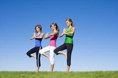 Mulheres que fazem a ioga e o exercício da manhã Foto de Stock