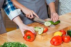 Mulheres que fazem a salada o estilo de vida saudável da nutrição imagens de stock