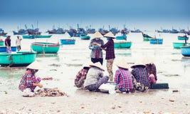 Mulheres que limpam peixes na praia Vietnam foto de stock