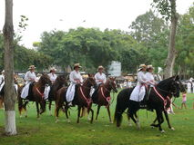 Mulheres que montam cavalos peruanos de Paso, Lima Imagem de Stock Royalty Free