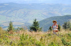 Mulheres que recolhem bagas nas montanhas Fotografia de Stock