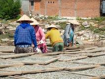 Mulheres que secam peixes, ingrediente de alimento vietnamiano tradicional, Phu Q Imagem de Stock Royalty Free
