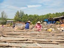 Mulheres que secam peixes, ingrediente de alimento vietnamiano tradicional, Phu Q Imagens de Stock Royalty Free