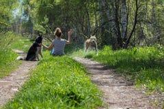 Mulheres que sentam-se com os cães na floresta Imagem de Stock Royalty Free