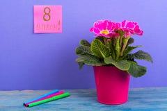 Mulheres ` s dia o 8 de março internacional Lembrete, folhas no fundo brilhante Ramalhete das flores na tabela de madeira Fotografia de Stock Royalty Free