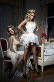 Mulheres sensuais com corpo perfeito fotografia de stock royalty free