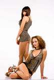 Mulheres 'sexy' na roupa interior Fotografia de Stock Royalty Free
