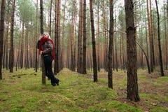 Mulheres sozinhas novas na floresta imagens de stock royalty free