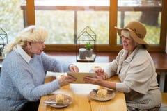 Mulheres superiores que guardam a tabuleta imagem de stock royalty free