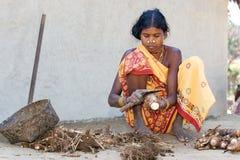 Mulheres tribais indianas na vila Fotografia de Stock