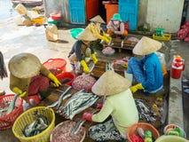Mulheres vietnamianas que processam a carne de peixes em uma vila do fisher no Imagem de Stock Royalty Free