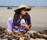 Mulheres vietnamianas que recolhem a madeira lançada à costa em Hoi An Imagens de Stock